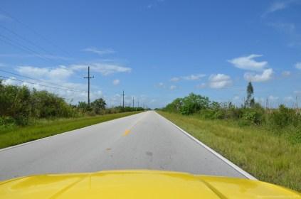 Der Weg in die Everglades