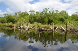 Zerstörter Anleger in den Everglades