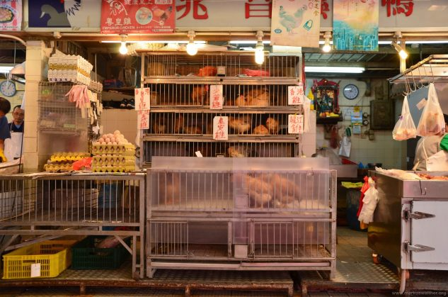 113 Hongkong Food Market 02