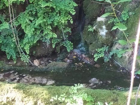 La font del Lloret (Marxuquera)