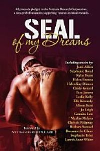 SEAL of My Dreams book cover