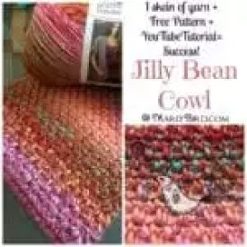 Jilly Bean Cowl Free Pattern from MarlyBird.com