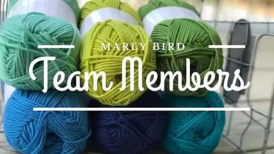 Meet the two newest members of the Marly Bird Team