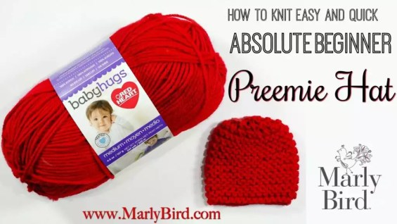 Absolute Beginner Preemie Hat