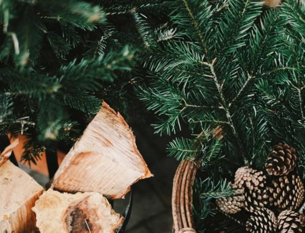 noel-green-cadeau