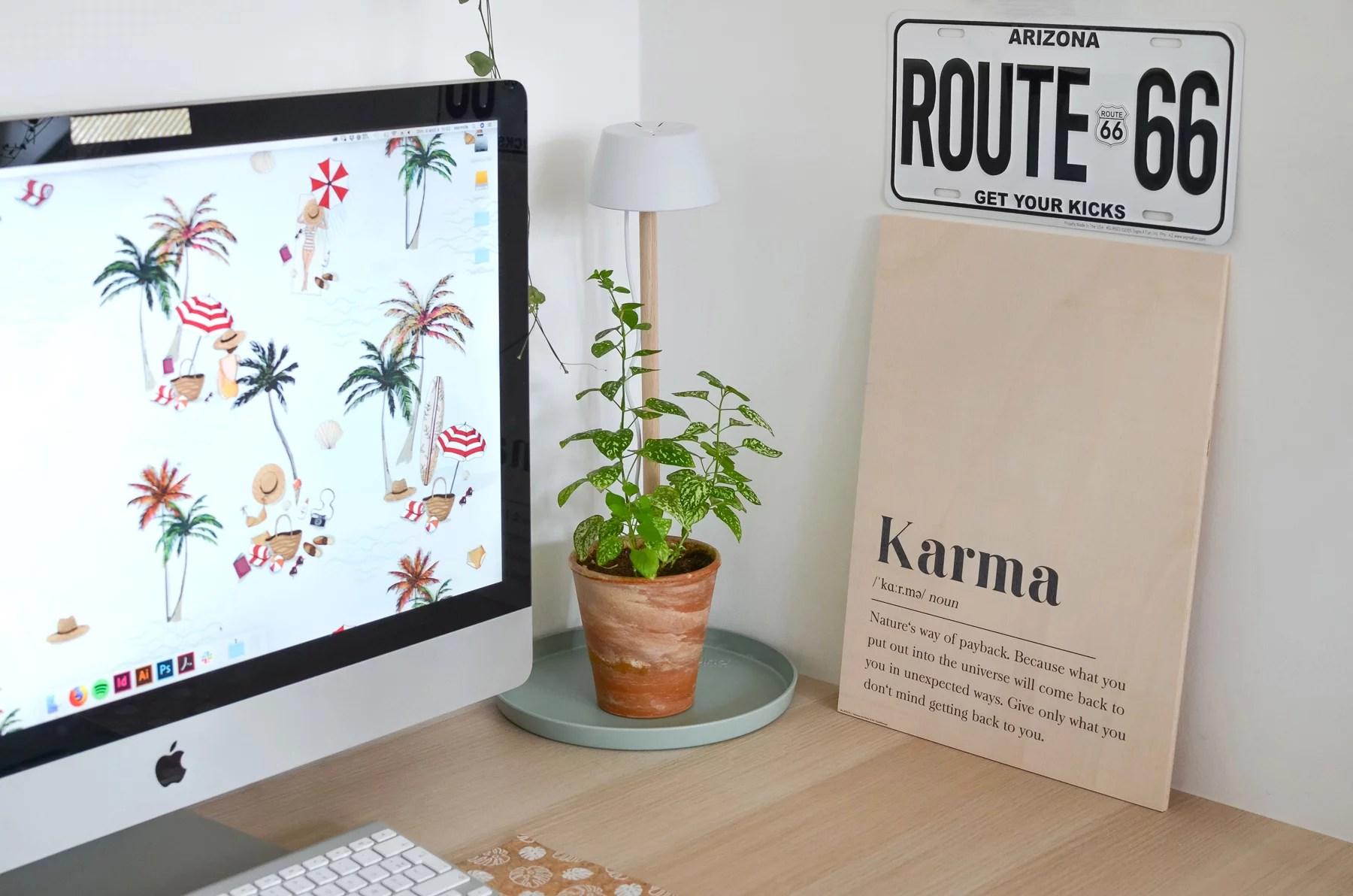 elho accessoires plante marmille jungle home 1 - Mes objets et accessoires design pour ma petite jungle urbaine
