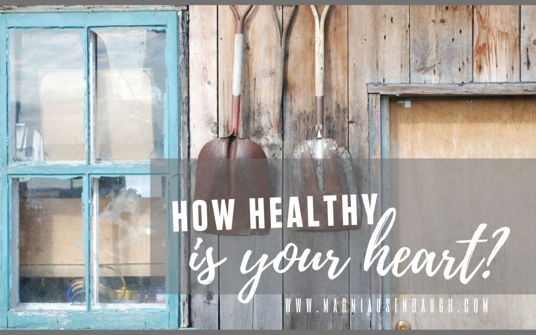 How Healthy is your Heart