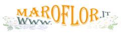 Maroflor Blog