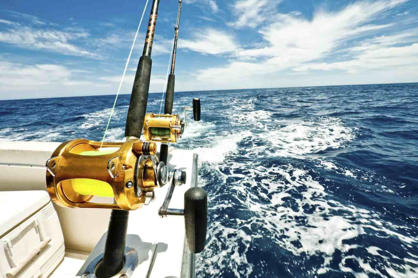 Image result for Fishing Charters istock