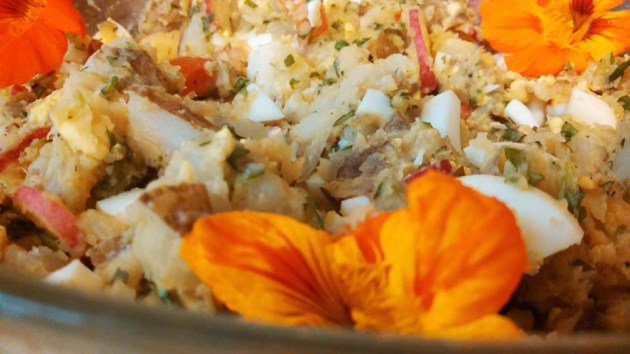 potato-salad-rachel-mills-vagabond-kitchen-photo