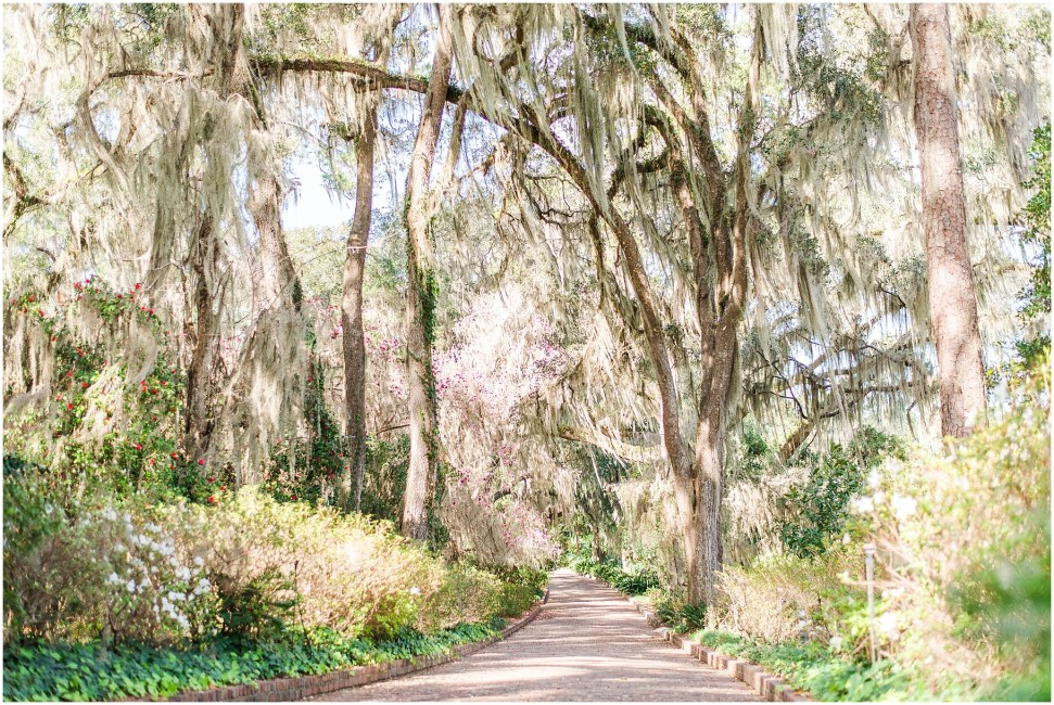 Alfred B. Maclay Gardens State Park | Best in Travel Tallahassee, FL