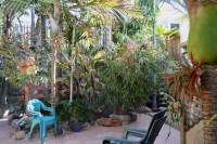 Dennis Willoughbys Beautiful Palm Garden