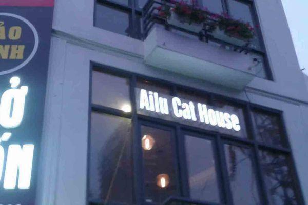Ailu Cat Cafe – Hanoi
