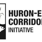 non-profit, logo design