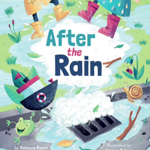 Cover for After the Rain