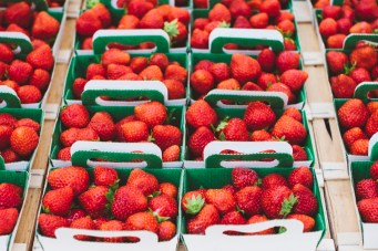 hand-picked summer strawberries