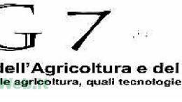 LOGO G7 LUCO