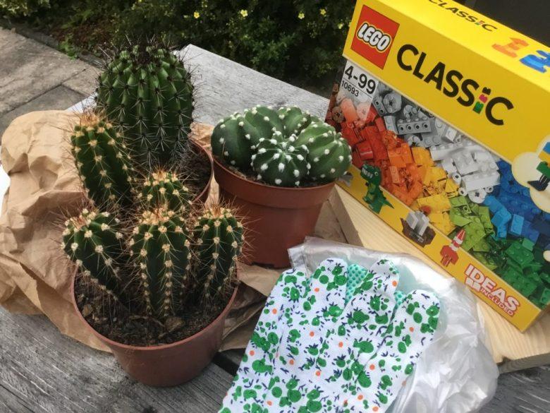 Het pakket bestond uit een doos lego, 3 mooie cactussen en handschoenen.