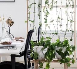 intratuin office divider