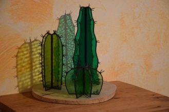 Composizione di cactus