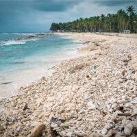 Rozdrcené mušle, Half Moon Caye, Belize (Mart Eslem)