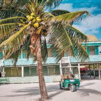 Golfové vozítko k pronájmu, Caye Caulker, Belize (Mart Eslem)