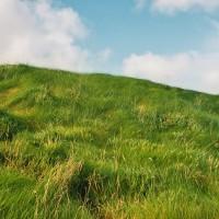 Zelená je v Irsku tou nejzelenější na světě (Mart Eslem)