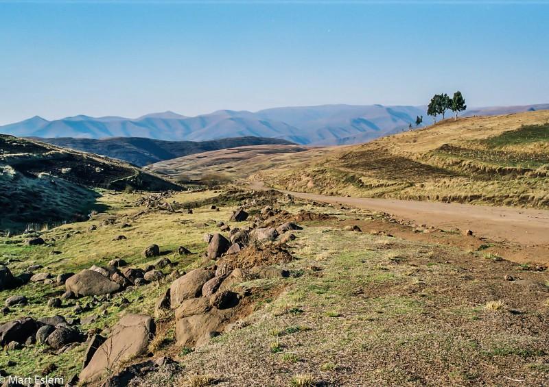 Jihoafrické dobrodružství (2002), Mart Eslem