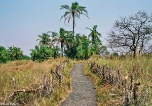 Krajina v okolí Victoria Falls - suchá varianta, JAR [Mart Eslem]