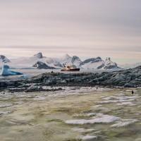 Na území tučňáků (Mart Eslem)