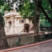 Zoologická zahrada ve čtvrti Palermo v Buenos Aires – Palermo, Buenos Aires, Argentina [Mart Eslem]