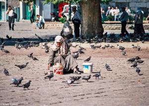 Holubi na náměstí Beyazit v Istanbulu (Mart Eslem)