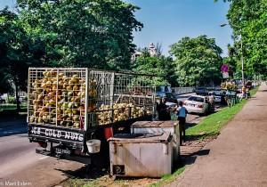 Pojízdný stánek s kokosy v Port of Spain (Mart Eslem)