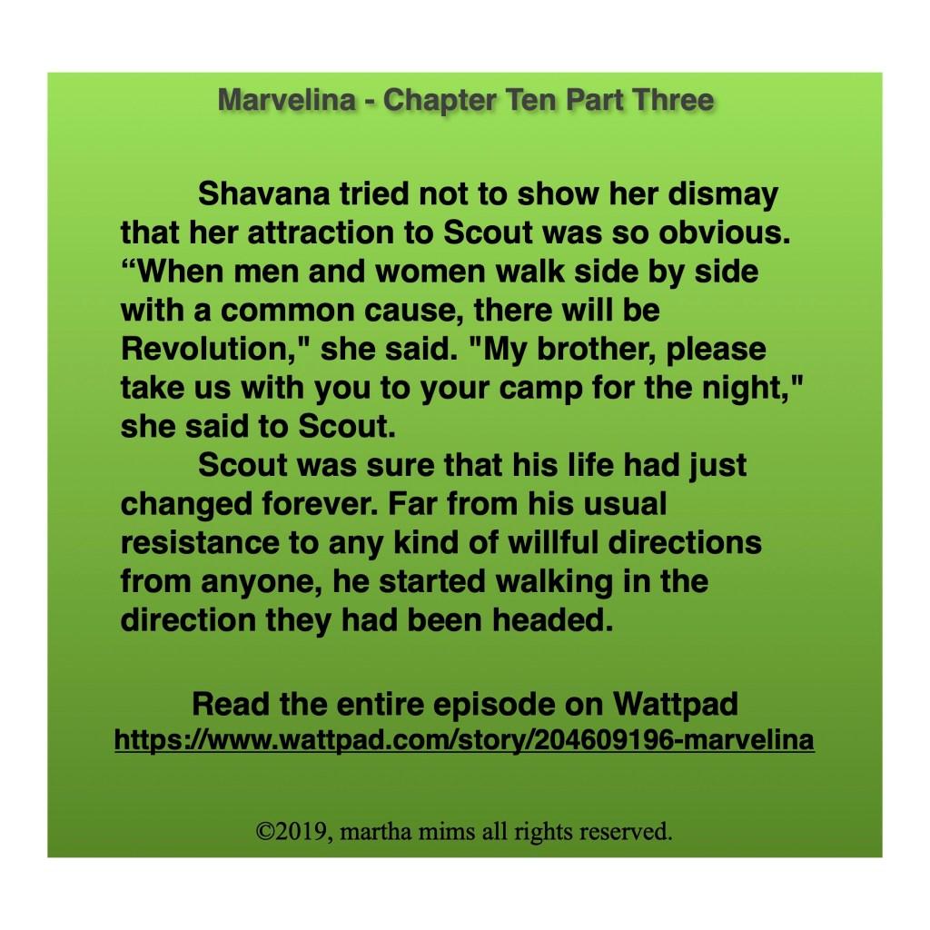 "Shavana tried not to show her dismay that her attraction to Scout was so obvious. ""When men and women walk side by side with a common cause, there will be Revolution,"" she said. ""My brother, please take us with you to your camp for the night,"" she said to Scout.  	Scout was sure that his life had just changed forever. Far from his usual resistance to any kind of willful directions from anyone, he started walking in the direction they had been headed."
