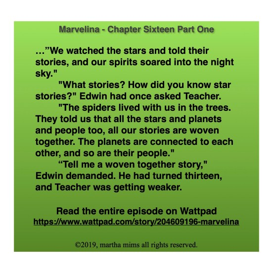 "…""We watched the stars and told their stories, and our spirits soared into the night sky.""  	""What stories? How did you know star stories?"" Edwin had once asked Teacher. 	""The spiders lived with us in the trees. They told us that all the stars and planets and people too, all our stories are woven together. The planets are connected to each other, and so are their people."" 	""Tell me a woven together story,"" Edwin demanded. He had turned thirteen, and Teacher was getting weaker."