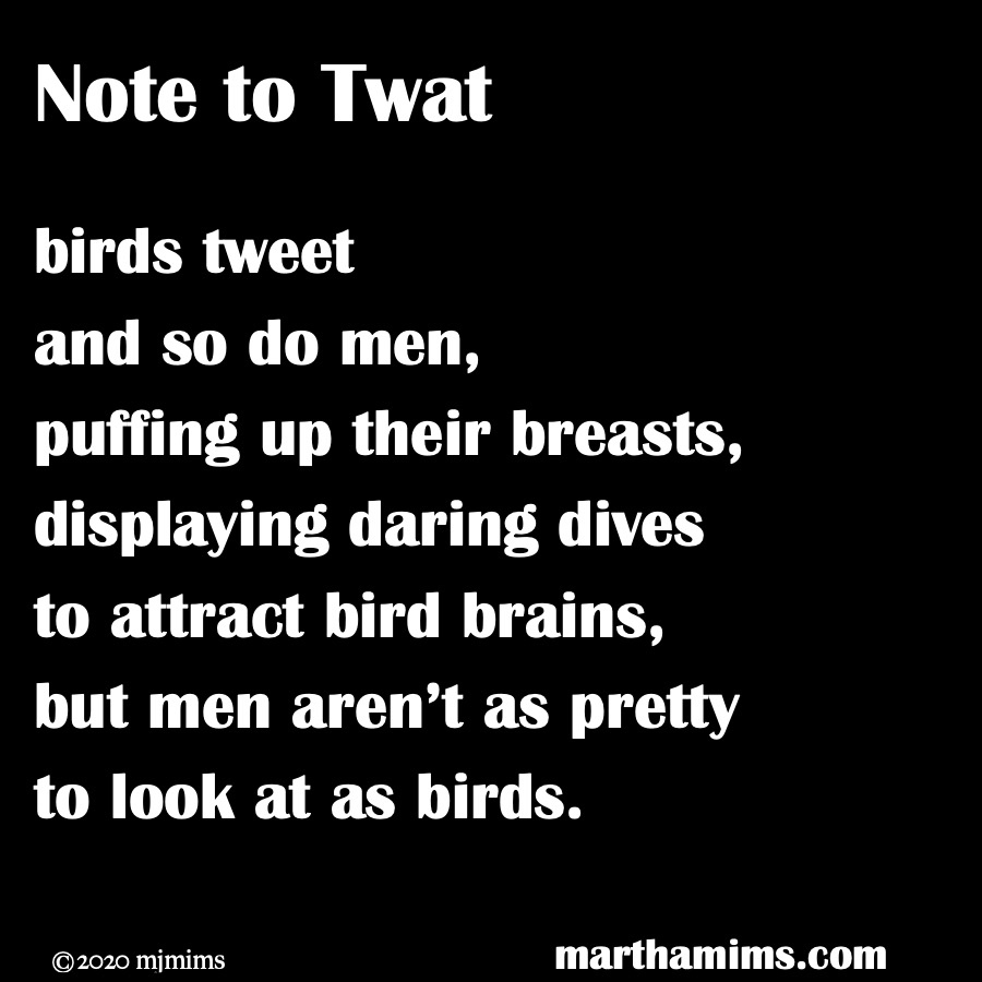 Note to Twat  birds tweet and so do men, puffing up their breasts, displaying daring dives to attract bird brains, but men aren't as pretty to look at as birds.