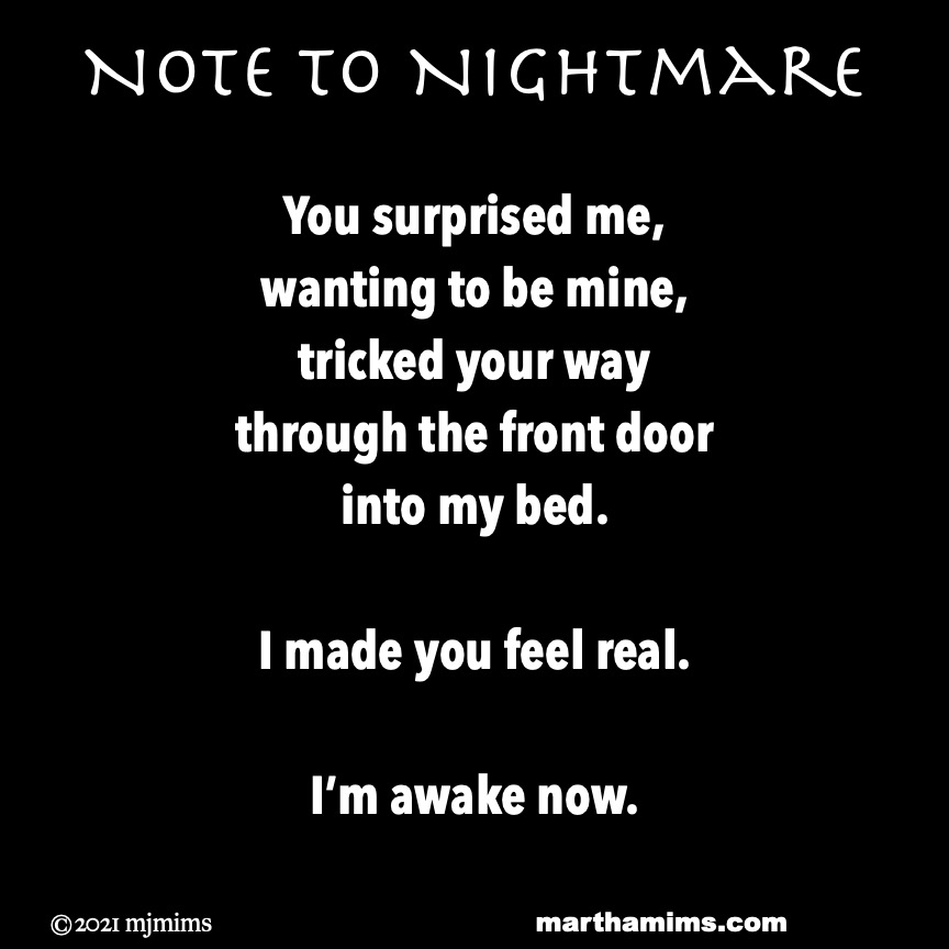 Note to Nightmare   You surprised me, wanting to be mine, tricked your way through the front door into my bed.  I made you feel real.  I'm awake now.