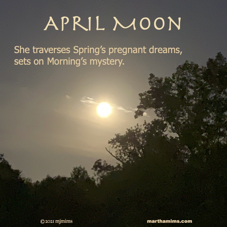April Moon She traverses Spring's pregnant dreams,  sets on Morning's mystery.