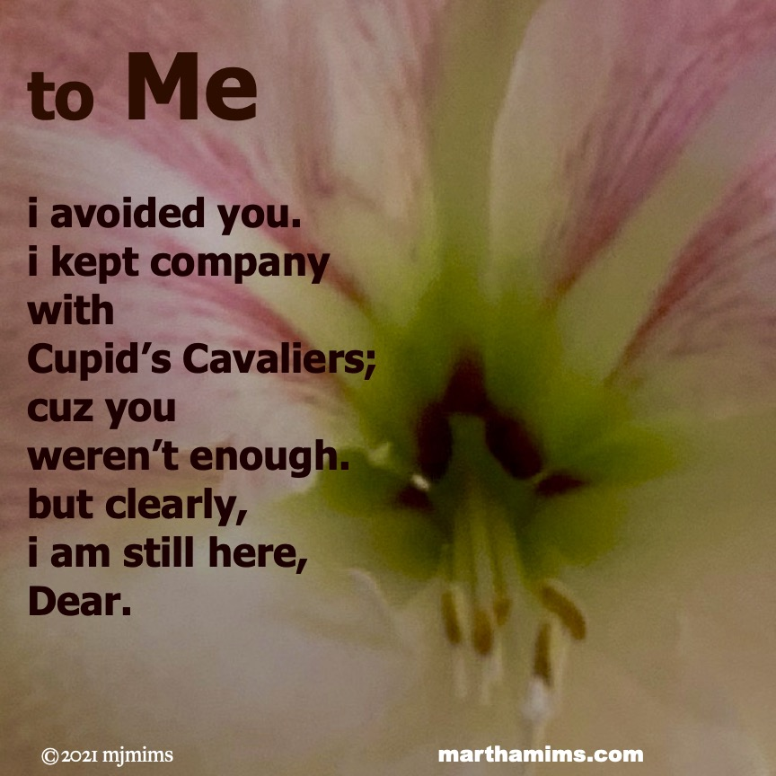 to Me  i avoided you. i kept company  with  Cupid's Cavaliers; cuz you  weren't enough. but clearly,  i am still here,  Dear.