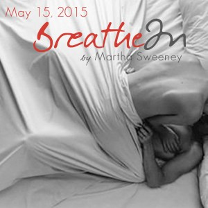 Breathe In by Martha Sweeney book