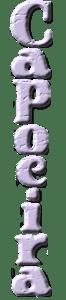 Significato della Capoeira