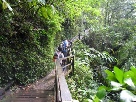 The start of the climb up Mt Kinabalu