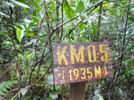 First distance marker! These are positioned every 0.5km along the trail, so you always know how far you've come.