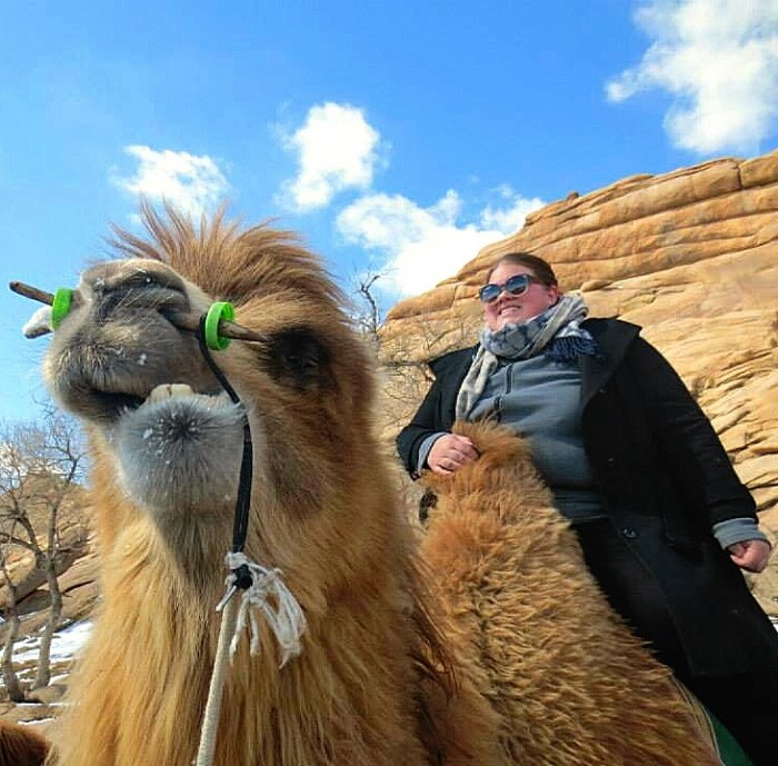 Anita's camel pulling a face for the picture