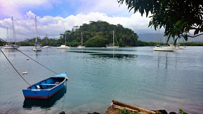 Yachts dotting the pretty Savusavu harbour