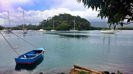Yachts dotting the pretty Savusavu harbour