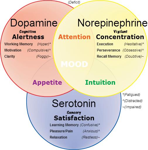 serotonin dopamin skillnad