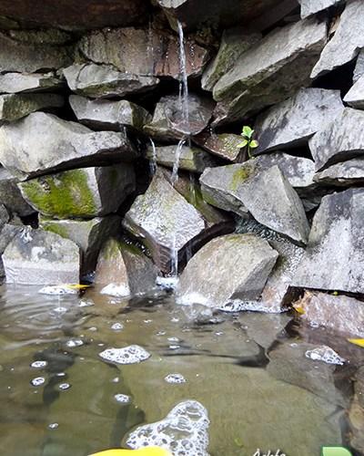 verde-martinato-reserva-sao-vedelino-agua