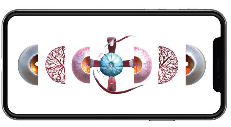 app-eyenatomy-olho-3d