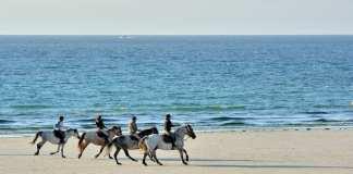 Una excursión 100 % ecológica para recorrer cada rincón de Menorca